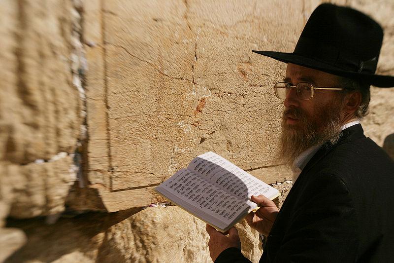 Reading-Torah-Western Wall