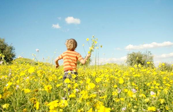 boy-field-flowers