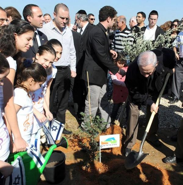 Netanyahu_tubishvat