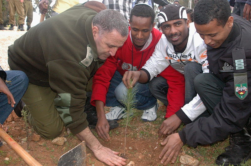 Israel_Defense_Forces_-_New_Immigrants_Plant_Trees_for_Tomorrow