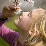 blossom girl-almond