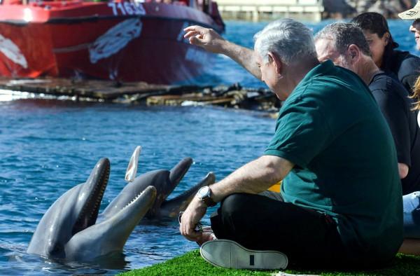 Netanyahu, Greenberg, Royal Tour, Dolphin Reef, Eilat 2013