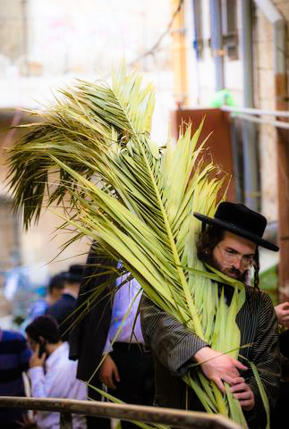 Chasidim-Carrying-Palm-Branches