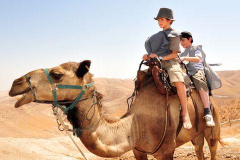 boys-camel-desert