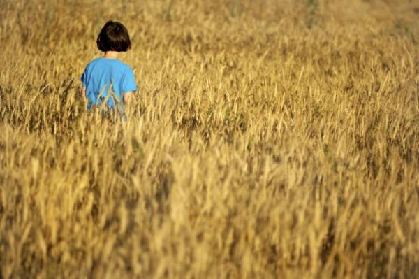 girl-wheat-field-Israel
