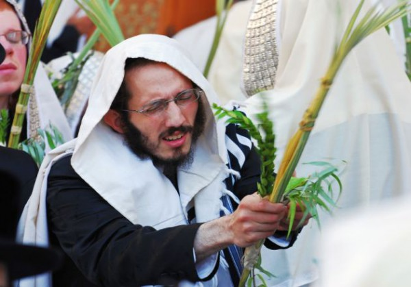 Sukkot-four species-Arba Minim-Four Species-etrog-aravot-hadassim