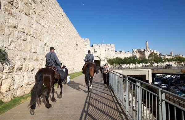 Jerusalem-horses