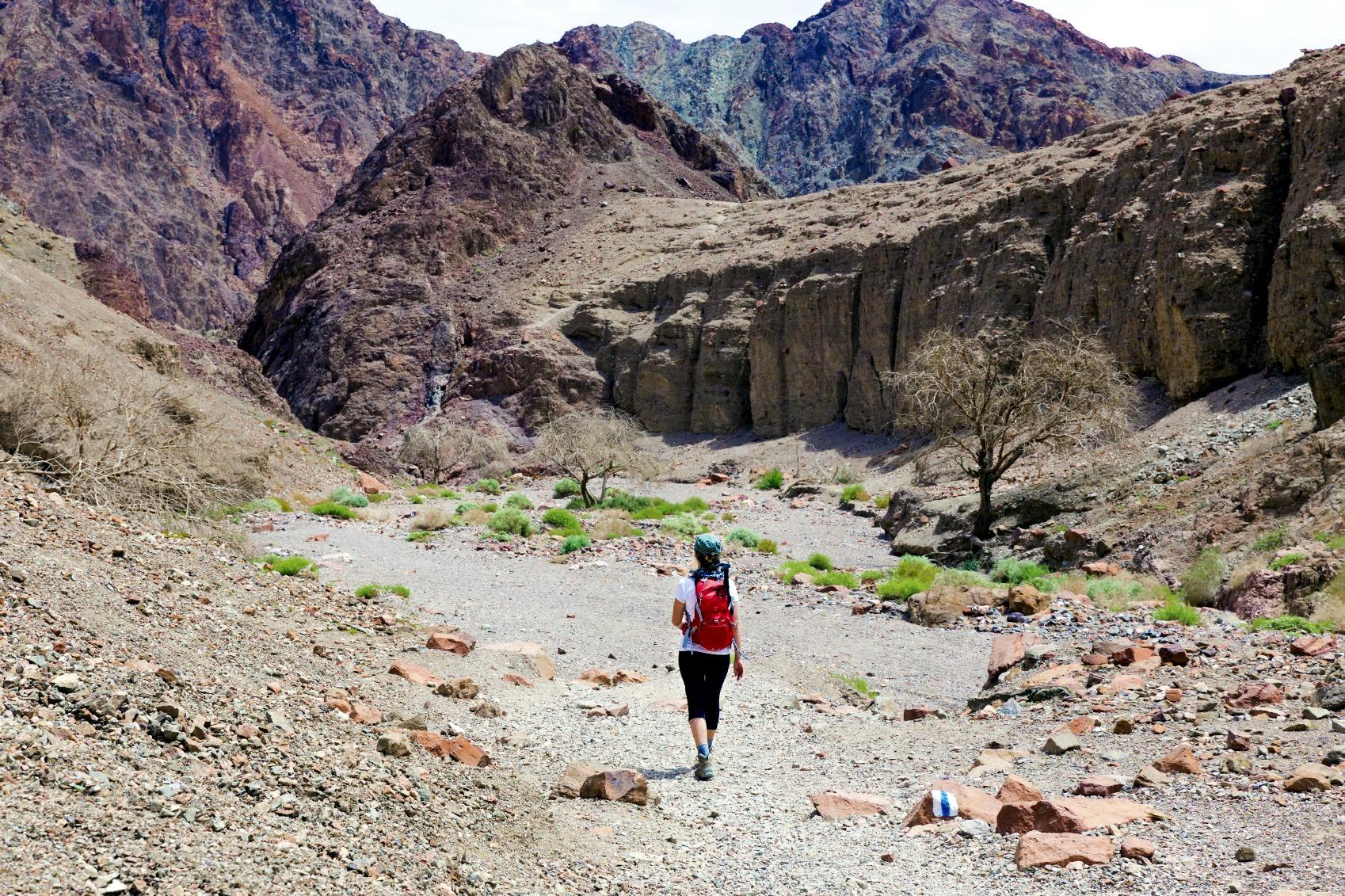 Hiking-desert