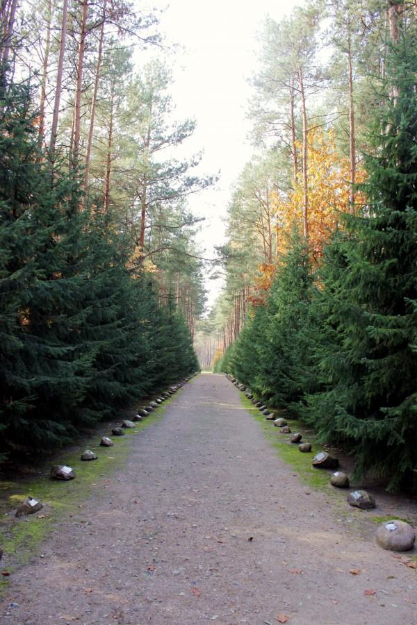 Sobibor-Road to heaven