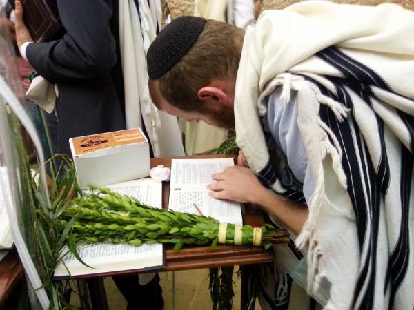 A Jewish man wearing a tallit (prayer shawl) prays using a siddur (prayer book) during Sukkot.