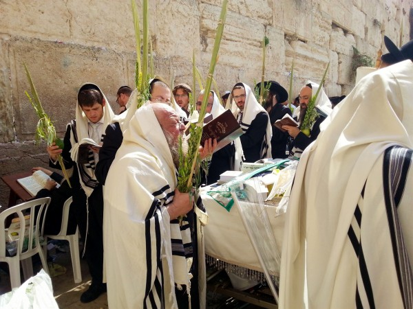 Jewish men at the Western Wall in the Old City of Jerusalem carry the Four Species of Sukkot (Leviticus 23:40), which are traditionally the citron, the date palm, myrtle, and willow.