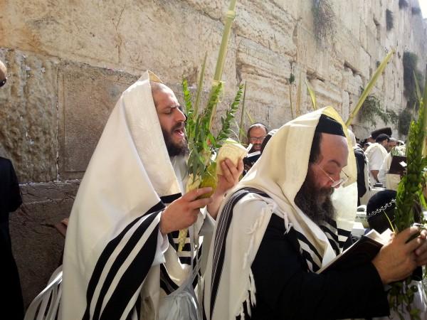 lulav-Kotel-prayer-Sukkot-Western-wall-Jerusalem
