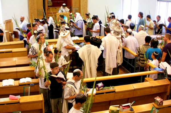 Torah-Scrolls-Hoshana Rabbah-Citrons-Lulav-Etrogs-Hoshanot