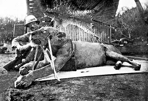 Colonel John Patterson Lions of Tsavo 1898 Kenya-Uganda Railway