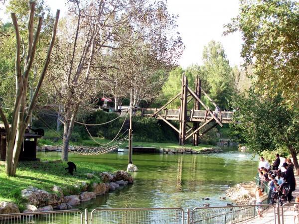 Israelis visit the zoo in Jerusalem.