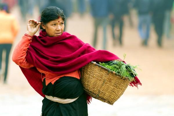 Israel-Nepal-senescence-agriculture-vegetables-greens