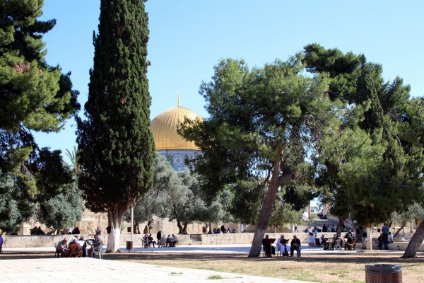 Dome of the Rock-Temple Mount-Palestinians-Muslim