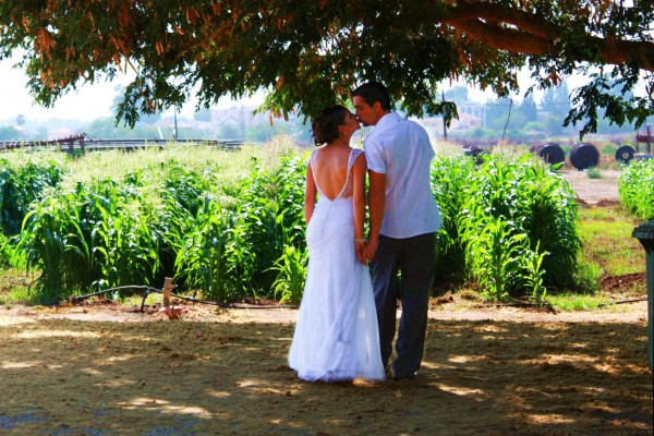 Israeli bride and groom share a kiss in the shade of a tree. (Photo by Reut C)