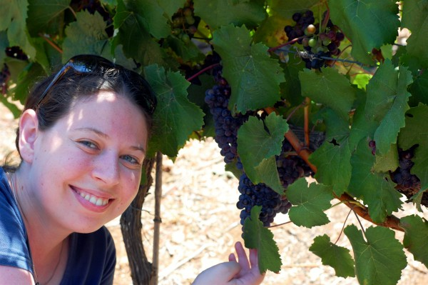 Woman in an Israeli vineyard (photo by Eli Brody)