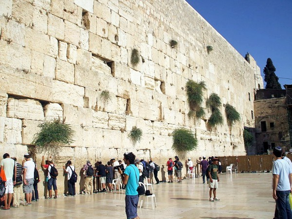 Prayer in the men's section at the Western Wall.
