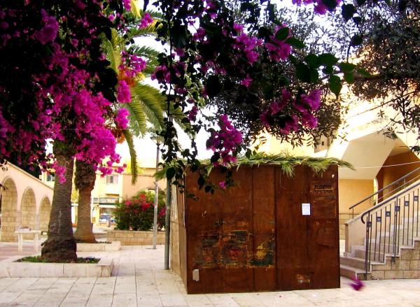 Sukkot-Feast of Tabernacle-Feast of Booths
