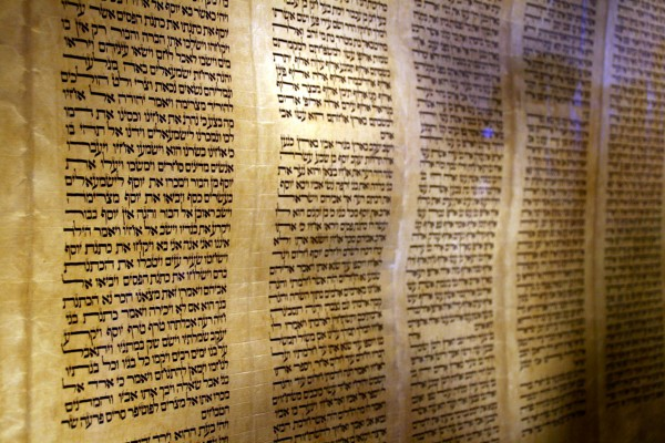 parchment-klaf-Torah scroll on display