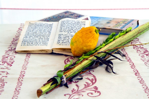 Sukkot-lulav-date palm frond-etrog-citron-hadass-myrtle-aravah (willow), and etrog (citron).