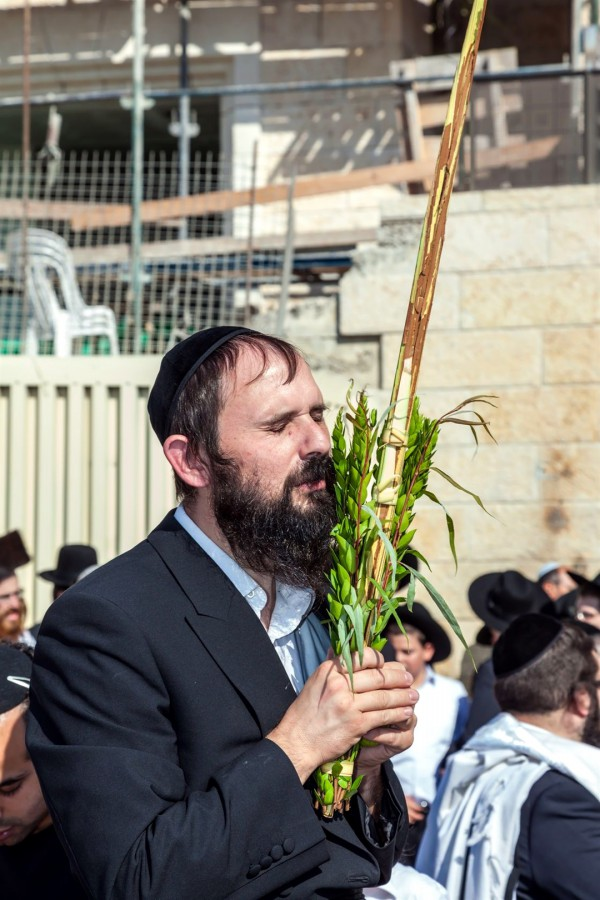 Kotel-Jewish Prayer-Sukkot-Arba Minim-Four Species