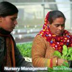 Indo Israel cooperation-agriculture