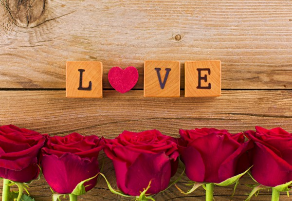 love, roses, ahava, chesed, dod, raya