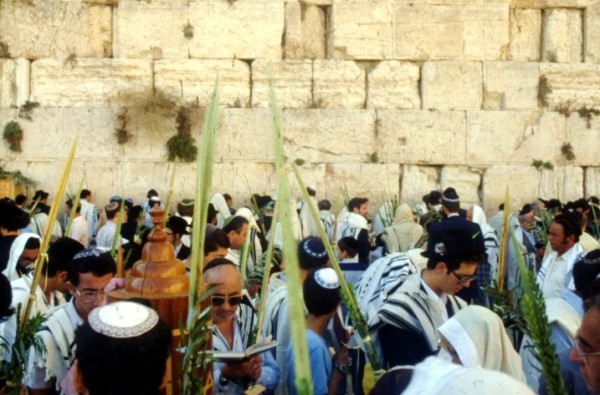 Sukkot, lulav, Jerusalem, Kotel, tallit, Jewish prayer