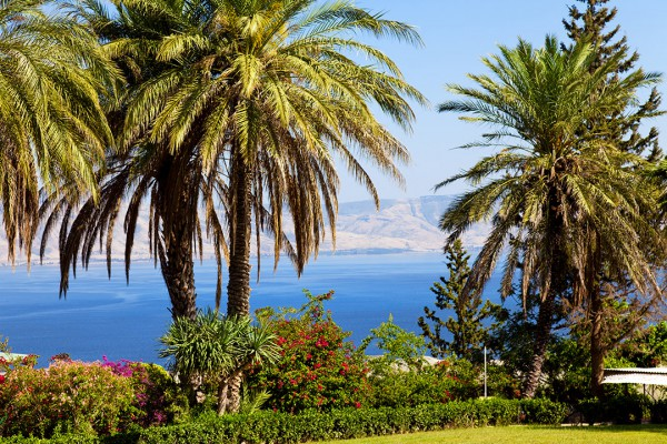 The Gardens at Mount of Beatitudes, overlooking the Sea of Galilee