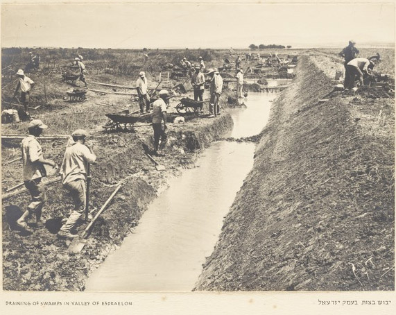 Chalutzim (pioneers) draining the swamps in the Jezreel Valley in the 1930s (National Library of Israel, Holy Land Collection)